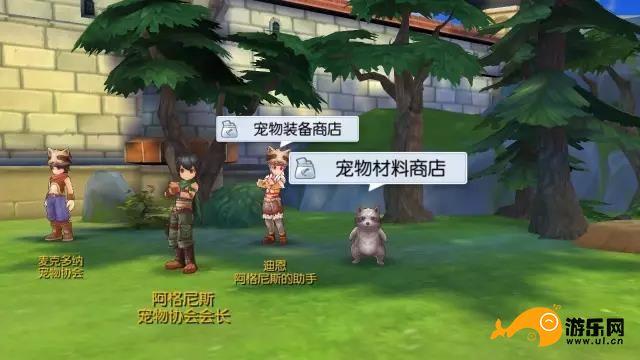 仙境传说RO手游宠物怎么抓?宠物捕捉攻略