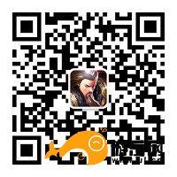 图3 官方微信公众号二维码:胡莱三国2.jpg